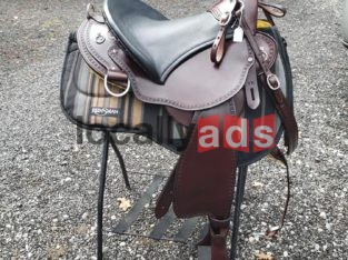 Beauna Vista Saddle For Sale