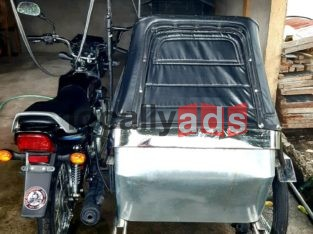 Motorcycle with Sidecar For Sale