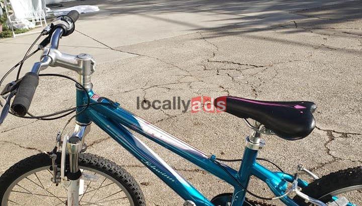 Schwinn teen bike